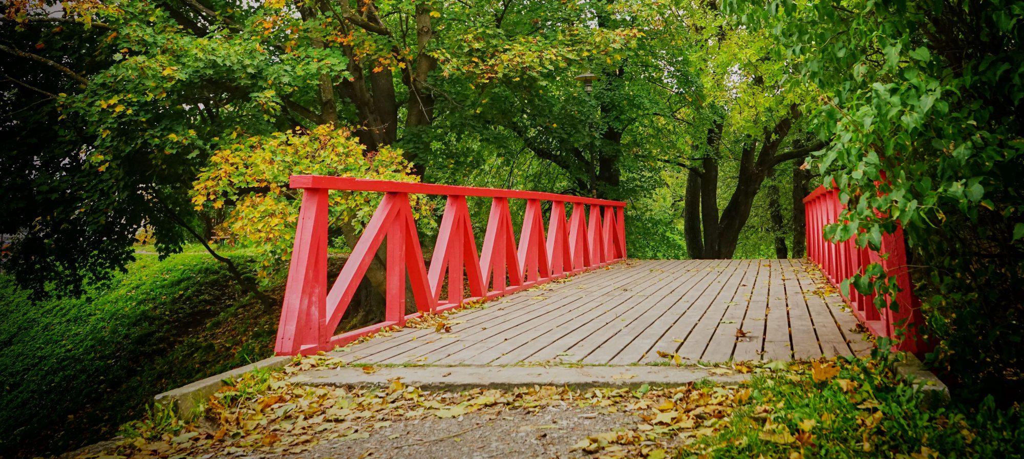 The Mindfulness Bridge